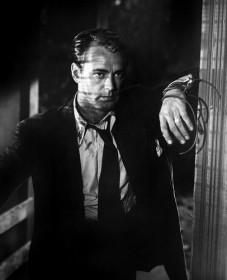 Alan Ladd dans le Dahlia bleu