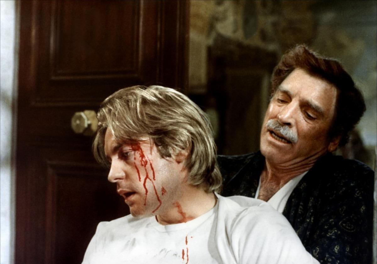 Violence et Passion (1974)