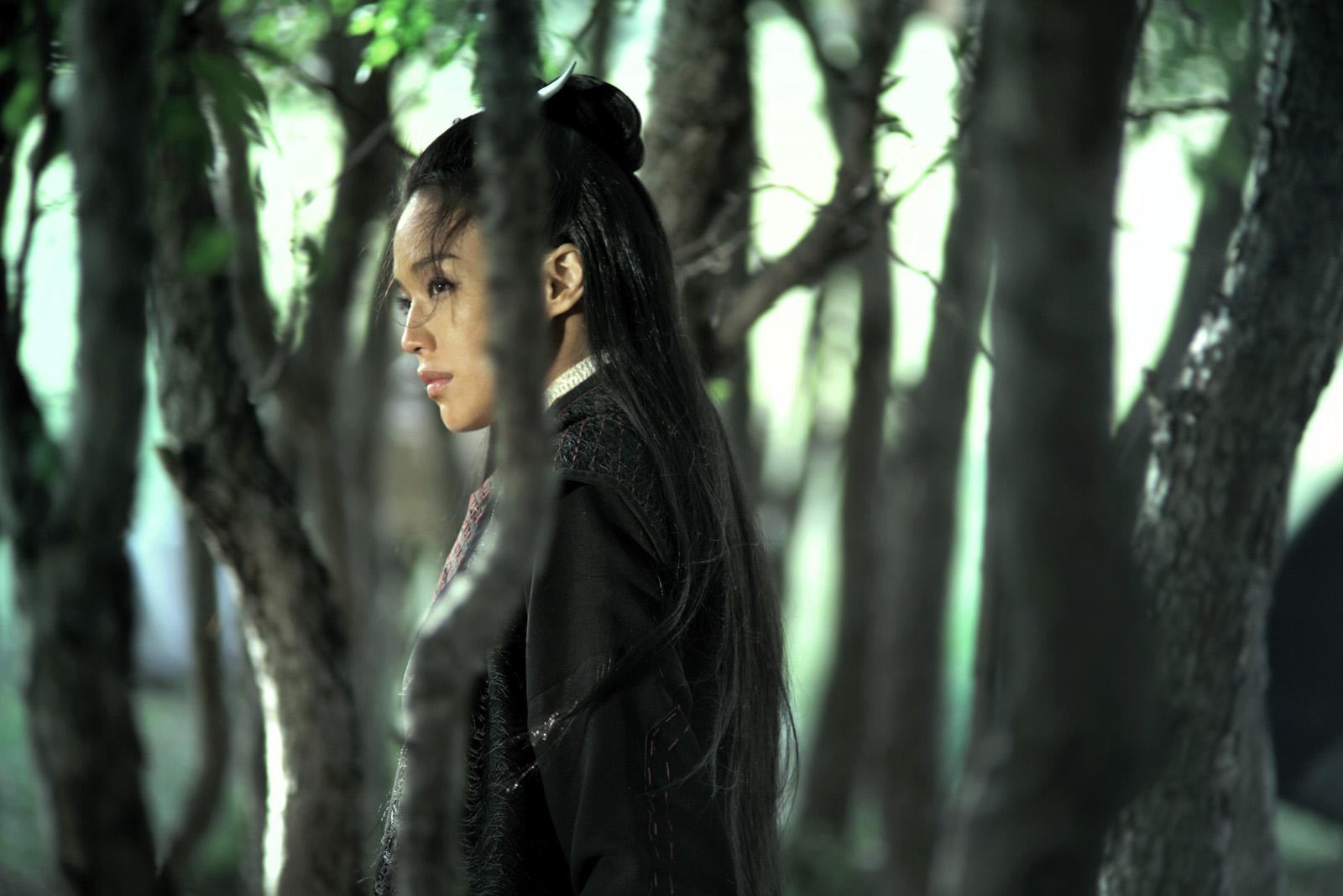 Sublime Shu Qi dans The Assassin de Hou Hsiao-hsien