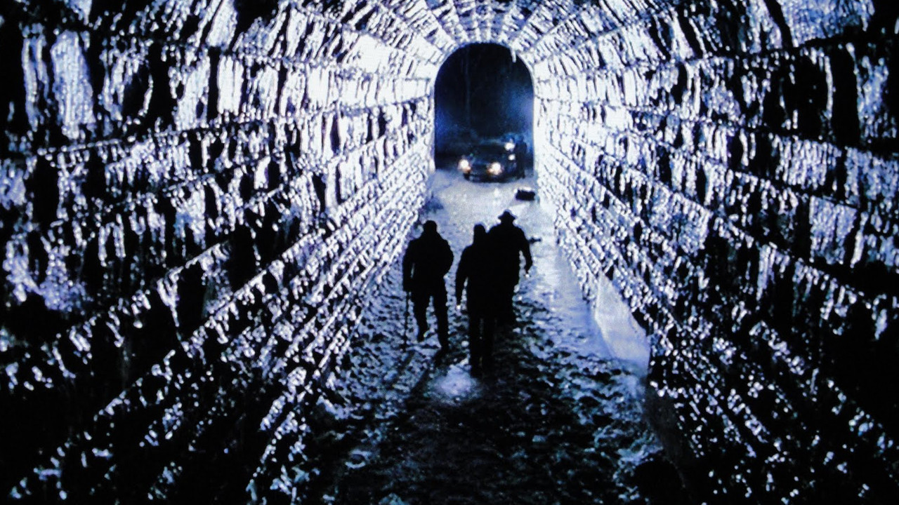 Dead Zone de David Cronenberg