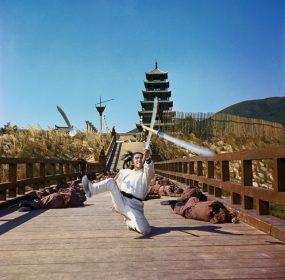 Bientôt disponible sur ARTE Cinéma : La Rage du tigre de Chang Cheh